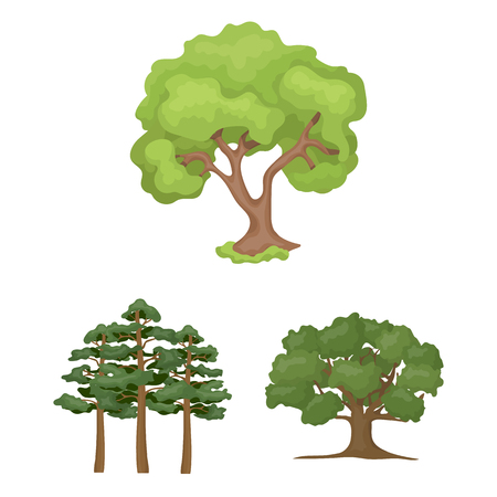 Vector illustration of tree  and forest sign. Set of tree  and green stock vector illustration.