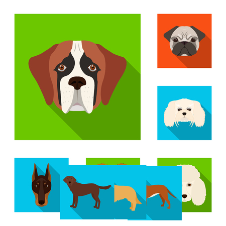 Isolated object of cute and puppy sign. Collection of cute and animal stock symbol for web. Illustration