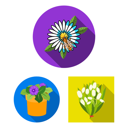 Vector design of spring and wreath icon.