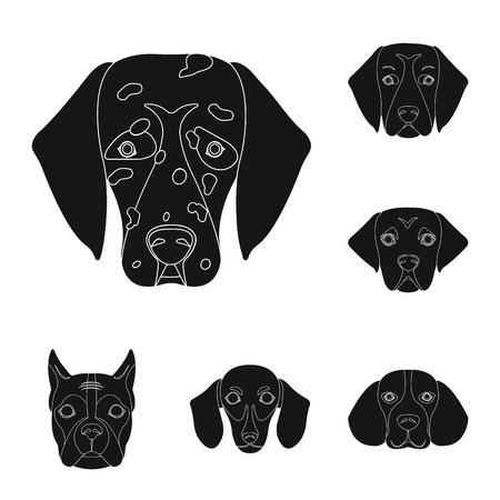 Vector design of cute and puppy. Set of cute and animal stock symbol for web.