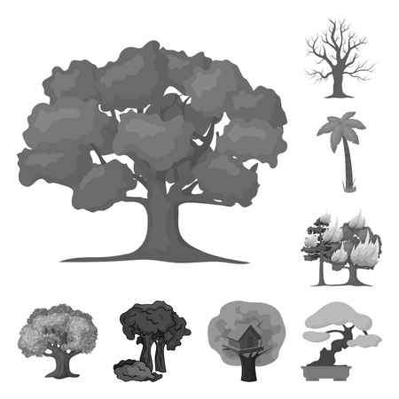 Vector design of tree and forest symbol. Set of tree and green vector icon for stock.
