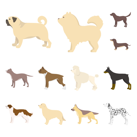 Isolated object of cute and puppy symbol. Set of cute and animal stock vector illustration. Illustration