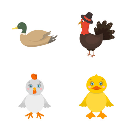 Vector illustration of funny and poultry icon. Collection of funny and farming stock vector illustration.