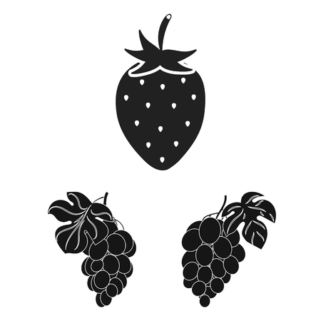 Vector illustration of berry and fruit symbol. Collection of berry and redberry  stock symbol for web.