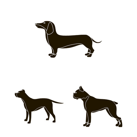 Isolated object of cute and puppy logo. Set of cute and animal vector icon for stock.