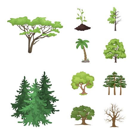 Vector illustration of tree  and forest sign. Set of tree  and green vector icon for stock. Illustration