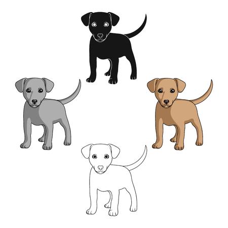 Puppy labrador.Animals single icon in cartoon style vector symbol stock illustration web. Illustration