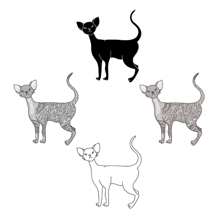 Cornish Rex icon in cartoon style isolated on white background. Cat breeds symbol stock vector illustration.