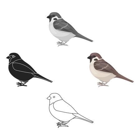 Icono de gorrión en estilo de dibujos animados aislado sobre fondo blanco. Ilustración de vector de valores de símbolo de pájaro. Ilustración de vector