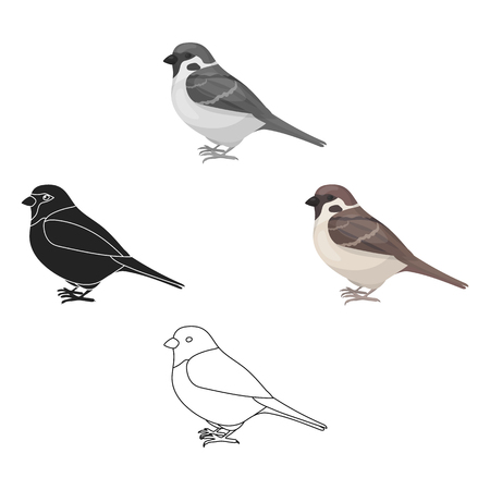 Sparrow icon in cartoon style isolated on white background. Bird symbol stock vector illustration.  イラスト・ベクター素材