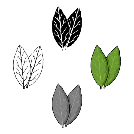 Laurus icon in cartoon style isolated on white background. Herb an spices symbol stock vector illustration. Vector Illustration
