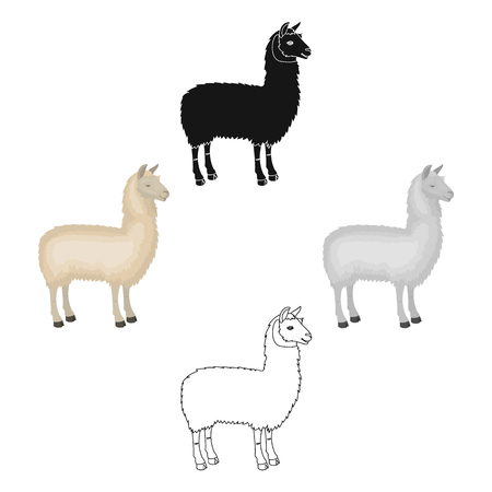 Lama, a South American pack animal. A lame, a cloven-hoofed mammal single icon in cartoon style vector symbol stock illustration web. Çizim