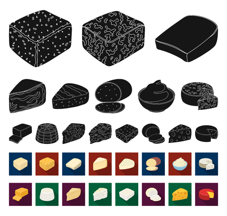 Different kind of cheese black,flat icons in set collection for design.Milk product cheese vector symbol stock web illustration.