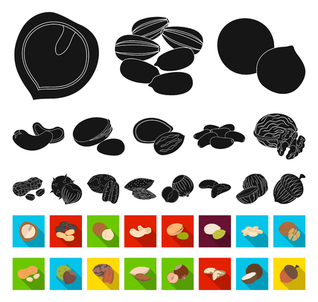 Different kinds of nuts black,flat icons in set collection for design.Nut Food vector symbol stock web illustration.
