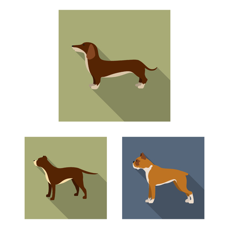 Vector illustration of cute and puppy icon. Set of cute and animal stock symbol for web.
