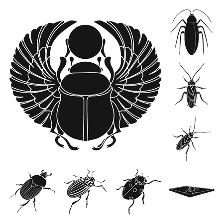 Isolated object of insect icon. Set of insect and halloween stock symbol for web.