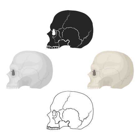 Skull icon in cartoon style isolated on white background. Black and white magic symbol stock vector illustration.