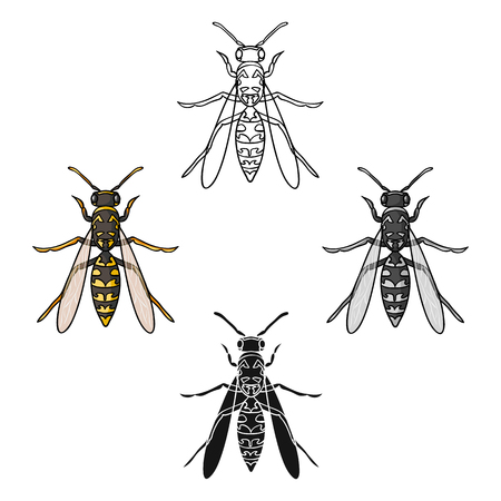 Wasp icon in cartoon style isolated on white background. Insects symbol stock vector illustration.