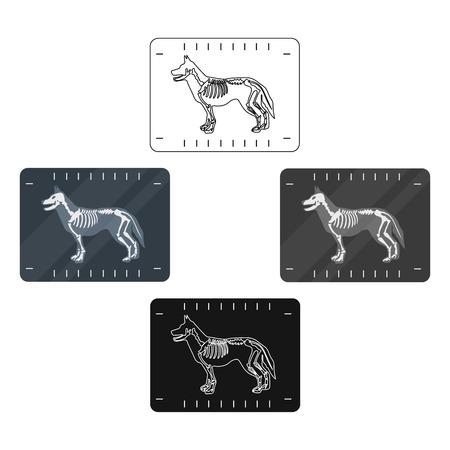 Icona di raggi x cane nello stile del fumetto isolato su priorità bassa bianca. Illustrazione di vettoriali stock simbolo clinica veterinaria.
