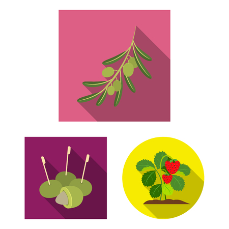 Vector design of berry and fruit symbol. Set of berry and redberry  vector icon for stock.