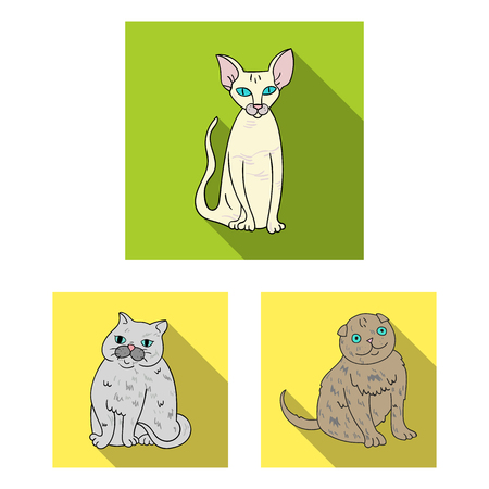 Vector illustration of pet and sphynx icon. Set of pet and fun stock symbol for web.