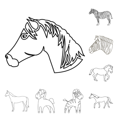 Isolated object of trot and running logo. Set of trot and clipart stock symbol for web.