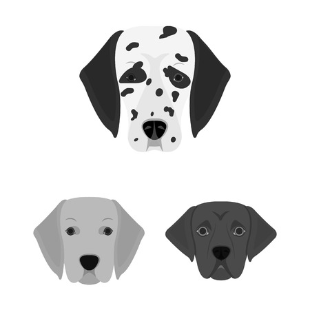 Vector design of cute and puppy logo. Collection of cute and animal vector icon for stock.