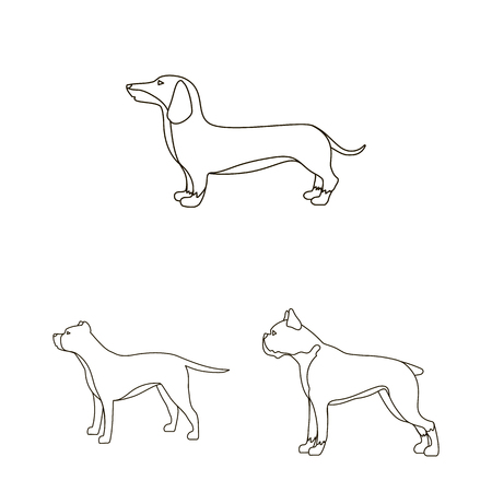 Vector illustration of cute and puppy symbol. Collection of cute and animal stock symbol for web.