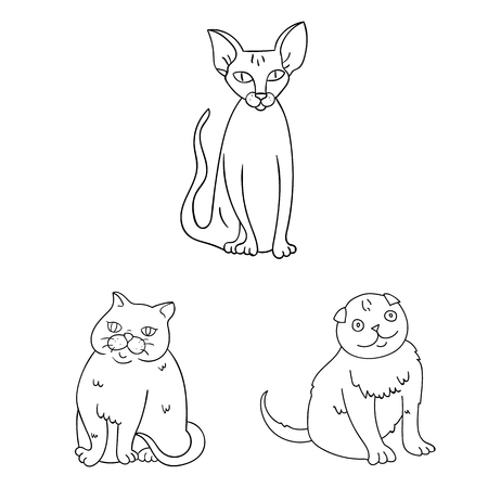 Isolated object of pet and sphynx sign. Collection of pet and fun vector icon for stock. Ilustração