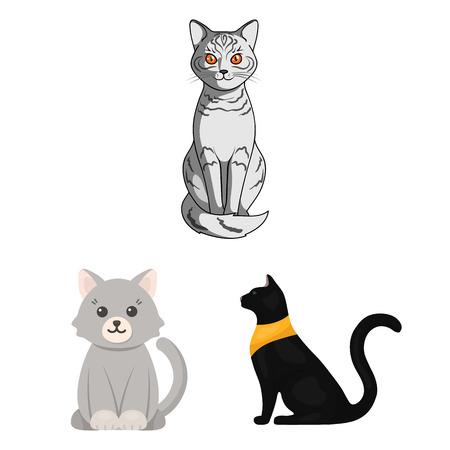 Vector illustration of pet and sphynx logo. Set of pet and fun stock vector illustration.