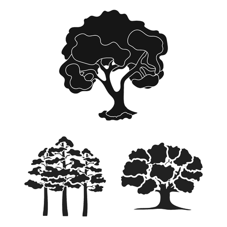Vector design of tree  and forest icon. Set of tree  and green stock vector illustration.