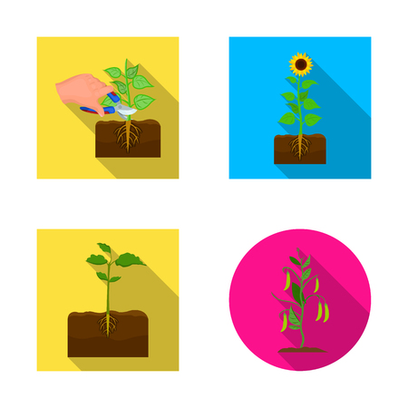 Vector illustration of plant and bean logo. Collection of plant and process vector icon for stock.