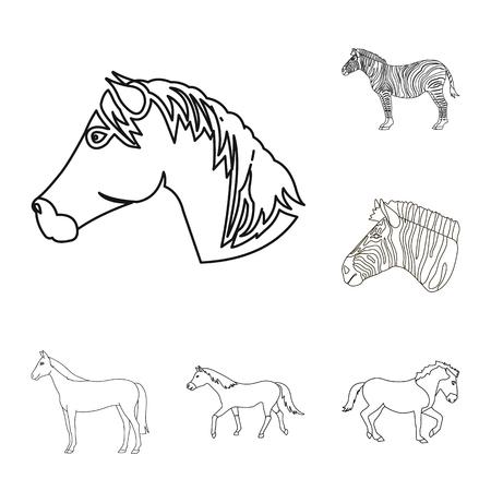 Vector illustration of trot and running symbol. Set of trot and clipart stock vector illustration. 向量圖像