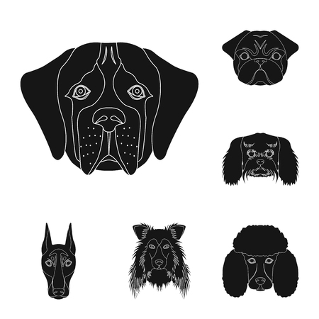 Isolated object of cute and puppy icon. Collection of cute and animal vector icon for stock.