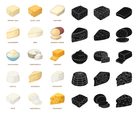 Different kind of cheese cartoon,black icons in set collection for design.Milk product cheese vector symbol stock  illustration.