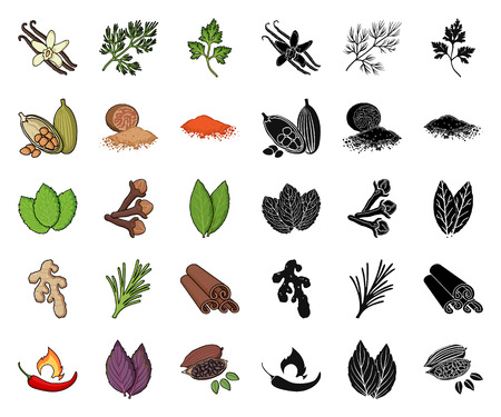Herb and spices cartoon,black icons in set collection for design.Different kinds of seasonings vector symbol stock  illustration.