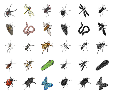 Different kinds of insects cartoon,black icons in set collection for design. Insect arthropod vector isometric symbol stock web illustration. Illustration