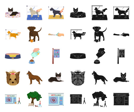 Pet cartoon,black icons in set collection for design. Care and education vector symbol stock web illustration.