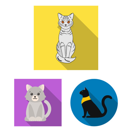 Vector illustration of pet and sphynx logo. Set of pet and fun vector icon for stock.