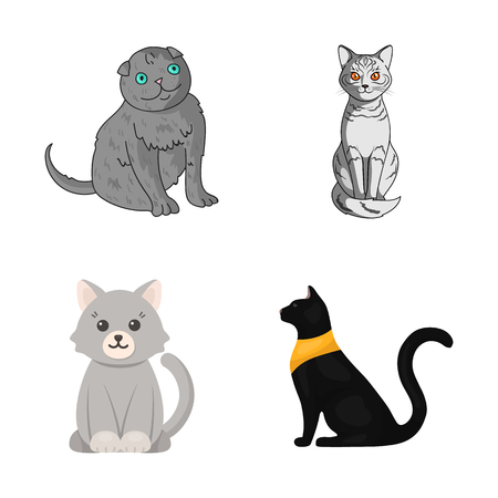 Isolated object of pet and sphynx sign. Set of pet and fun stock symbol for web.