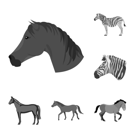 Vector design of trot and running icon. Set of trot and clipart vector icon for stock. 版權商用圖片 - 126209593