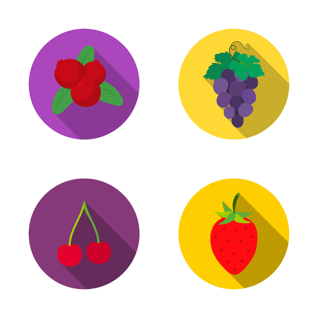 Isolated object of berry and fruit sign. Set of berry and redberry vector icon for stock.