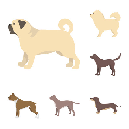 Vector illustration of cute and puppy symbol. Set of cute and animal stock vector illustration. Illustration