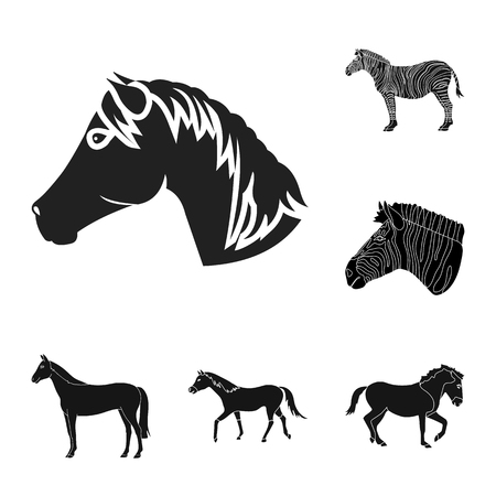 Vector design of trot and running icon. Set of trot and clipart vector icon for stock. 版權商用圖片 - 126078725