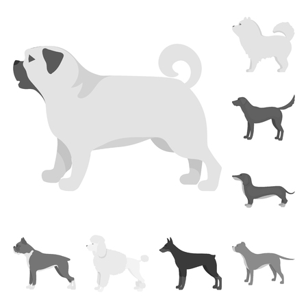 Vector design of cute and puppy icon. Collection of cute and animal stock symbol for web. Illustration