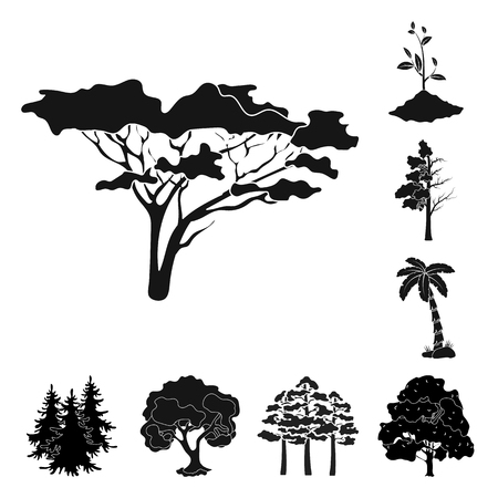 Vector design of tree  and forest icon. Set of tree  and green vector icon for stock. Illustration