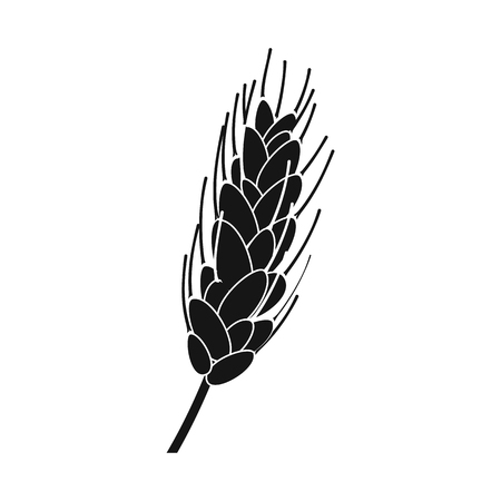 Isolated object of wheat and corn logo. Set of wheat and harvest stock vector illustration.