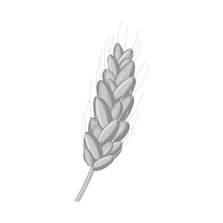 Vector illustration of wheat and corn symbol. Collection of wheat and harvest stock vector illustration. 向量圖像