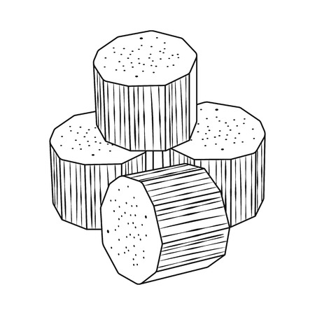 Isolated object of sugarcane and cane sign. Collection of sugarcane and field vector icon for stock.