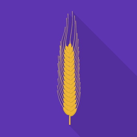 Isolated object of wheat and corn icon. Collection of wheat and harvest stock vector illustration. Ilustração
